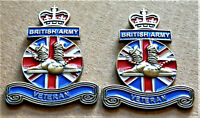 2 x BRITISH ARMY VETERAN ENAMEL MILITARY PIN BADGE UK VETERAN REMEMBRANCE BADGE