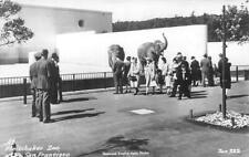 RPPC Fleishhacker Zoo San Francisco CA Fleischaker Elephants c1940s Zan Postcard