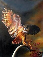 """Art Repro oil painting:""""THE owl at canvas"""" 24x36 inch"""