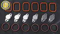 BMW SWIRL FLAP BOUCHON CLAPET BLANKS BUNGS AND MANIFOLD GASKETS 6 x 22 mm
