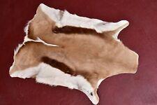 "African Gazelle Hide Rug throw Fur Pelt  42""x28"" Leather"