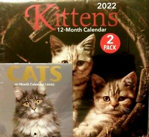 2022 2 PC KITTENS CATS WALL CALENDAR KITTEN CAT DAY PLANNING ORGANIZER FREE S/H!