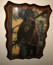 Vintage Lacquered Wood Bear Picture(22�X16�)