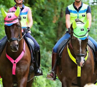 Equisafety Hi Viz Reflective NECK BAND Breastplate Horse Cob - Pink or Yellow