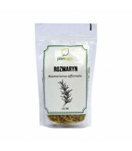 Rozmaryn lekarski (Rosmarinus officinalis)