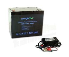 60Ah 12.8V LiFePo4 Battery Rechargeable Lithium Iron Phosphate 12V with Charger