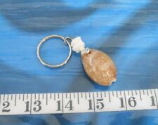 ~ Seashell Keychain ~ Cowrie Shell ~ Brown Polkadot with White Seashell Chips ~