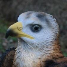 Adler Weißkopfseeadler auf Stamm Vogel Tierfigur Raubtier König Greifvogel Figur