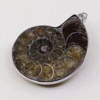 Vtg Sterling 925 Silver Handmade Nautilus Shell Fossil Pendant