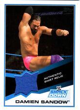 WWE Damien Sandow Event Used Shirt Relic Card  2013 Topps Triple Threat DWC