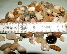 0,93€/kg Aquarienkies 4-8mm30kg Quarzkies Aquarium Fische Bodengrund Zierkies