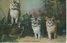 PC14429 Pretty Pussies. Landors Cat Studies. Tuck. 1906