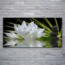 Tulup Print on Glass Wall art 120x60 Picture Image Flower Stones Water