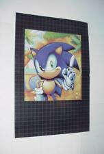 Sonic the Hedgehog Poster #23 Sonic Genesis in the Labyrith Zone Movie 2019