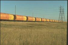 230035 CN Train And Federal Grain Cars Saskatchewan A4 Photo Print