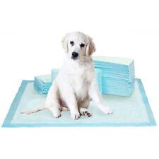 Kirkland Signature Extra-Large Absorbent Puppy Dog Training Pad 100pk 76 x 58cm