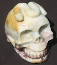 Large Carved Amazonite and Jasper Crystal Skull Rare Collectable (AS1)