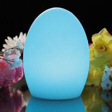 19cm Light Up Egg, Rechargeable LED Mood Light Night Lamp Sensory Light + Remote