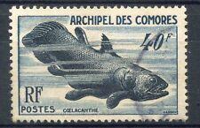 STAMP / TIMBRE ARCHIPEL DES COMORES OBLITERE N° 13 POISSON