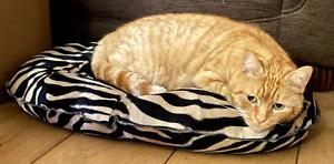 Soft Luxurious Zanzibar Nesting Velvet Quilted Mattress Cat Bed by Danish Design
