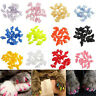20pcs Colorful Soft Pet Cat Nail Caps Claw Control Paws off + Adhesive Glue XS-L