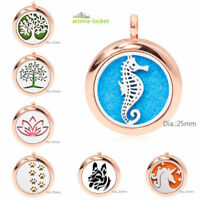 Alloy Pendant Necklace Aromatherapy Essential Oil Diffuser Locket jewelry Gift