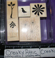 STAMPIN UP SPRING SOLITUDE 5 RUBBER STAMPS FLOWERS BIRD BRANCH DAISIES