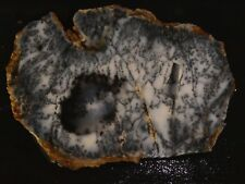"Dendtritic Opal  5 1/4"" x  3 5/8"" -rough -cabbing-display--NEW"