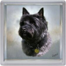 Cairn Terrier Dog Coaster No 3 by Starprint