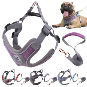 New Small Pet Vest Harness Leash Set for Walking Outdoor Dog Puppy Cat Soft Mesh