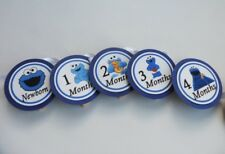 Cookie Monster Birthday Banner, 13 month clothespin picture display / 1st year