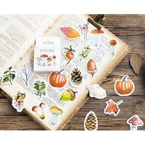 Set of 46 Autumn Forest Treasures Mini Box Scrapbooking Stickers Journalling