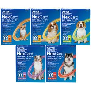 NexGard Spectra Flea Ticks, Heartworm, Intestinal Worm Nexgard Spectrum Nexguard