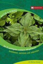 Die 12 wichtigsten essbaren Wildpflanzen | Bestimmen, sammeln und zubereiten