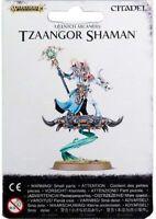W:AOS Tzeentch Arcanites /_Tzaangor Skyfire Blind Buy Single Figure Bits