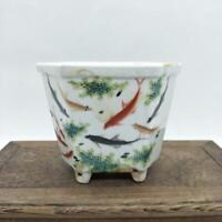 Republic Chinese Dynasty Porcelain famille rose carp pattern Square vase 5.2""