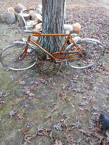 Vintage Coppertone Schwinn Collegiate 5 Speed Bicycle, great shape, needs tires,