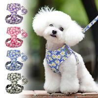 Reflective Pet Dog Cat Vest Harness and Leash Set Soft Mesh for Small Medium Dog