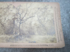 Myrtle Ave Ft George Island Florida USA Underwood Stereoview Card