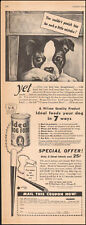 1948 Vintage ad for Ideal Dog Food`Cute Dog Art Coupon  091717