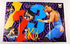 The Undertaker 123 Kid X-Pac Waltman Original 1992 Wrestling Poster WWF 22x32