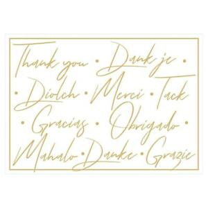 Caspari Thank You Notes, Thank You Languages Foil, Pack of 6 (90621.48)
