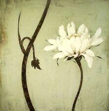 Ivo: avorio del fiore asia-style fatto - Immagine 70X70 QUADRO SU TELA FENG-SHUI