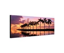 150x50cm Sonnenuntergang Miami Panorama Palmen Cutler Bay Florida Bild Sinus Art