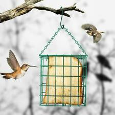 Green Square Bread Block Bird Feeder Outdoor Food Device Suet Feeding Station