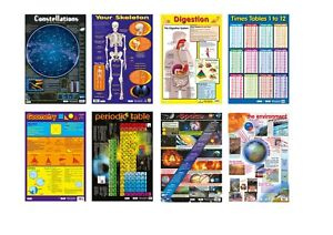 set of 8  Educational posters / Times Tables / Skeleton / Space  / A2 size
