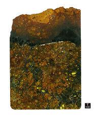 "Pallasite ""JEPARA"" - Slice oxidized crust - 180 g - 116 x 166 mm"