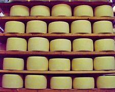 Formaggio pecorino sardo DOP Dolce