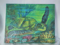Original Acrylic Painting Marine Life  11X14 Stretched Canvas Sea Turtle Art