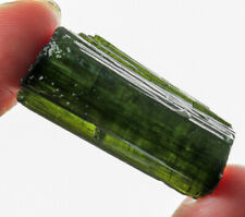 48.3Ct Natural Green Tourmaline Crystal Facet Rough Specimen YBGT1247